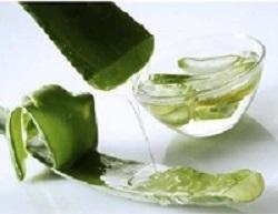 10 Merk Produk Aloe Vera Yang Halal Tanpa Alkohol